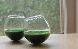 wheatgrass toast